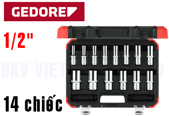 Bộ dụng cụ Gedore Red R61003114